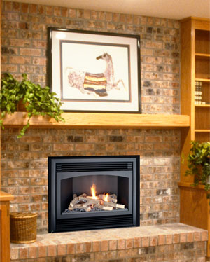 Gas Fireplace Vs. Pellet Insert | eHow.com